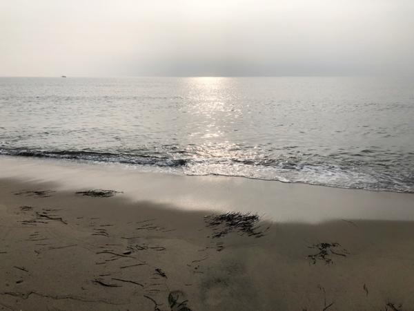 7月3日の香良洲海岸キス釣り釣果