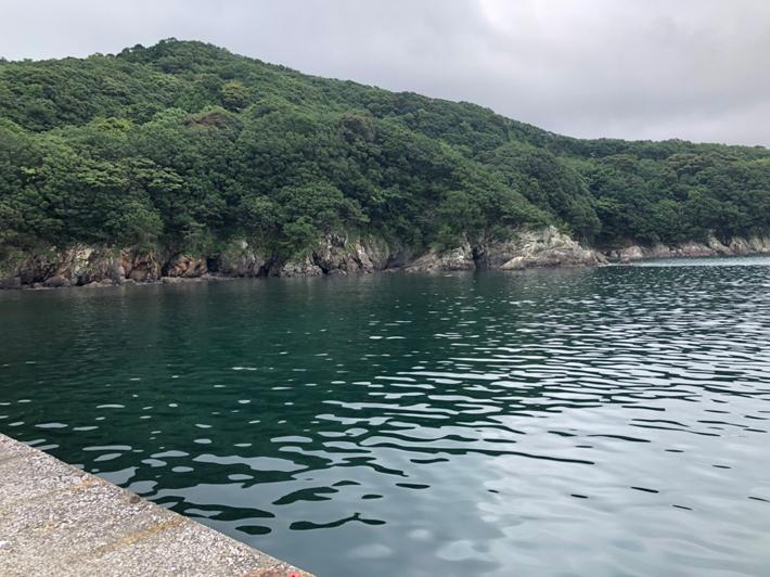奈屋浦漁港の風景