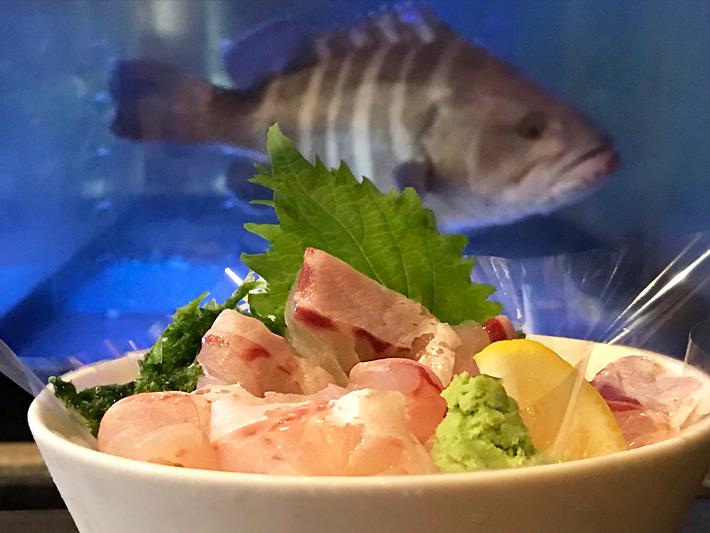居酒屋 大将 新鮮な魚が食べられる
