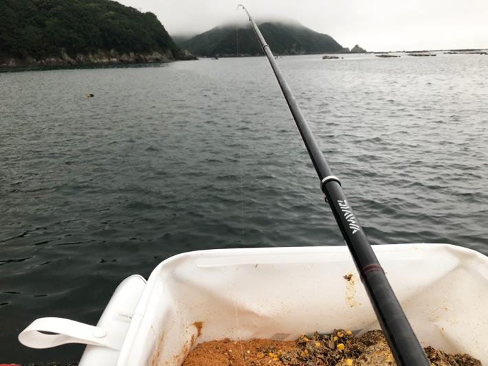 朝5時半に釣り開始