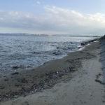 岩田川近く阿漕浦海岸 | セイゴ釣り釣果は?